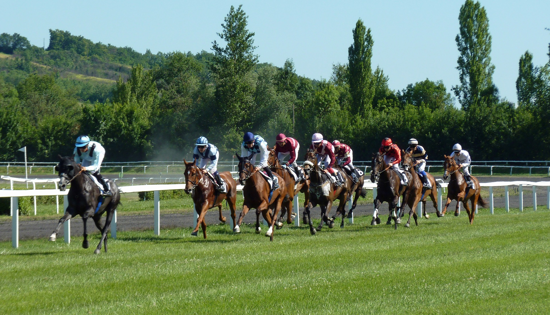 Northern Virginia Horse Country and Steeplechase