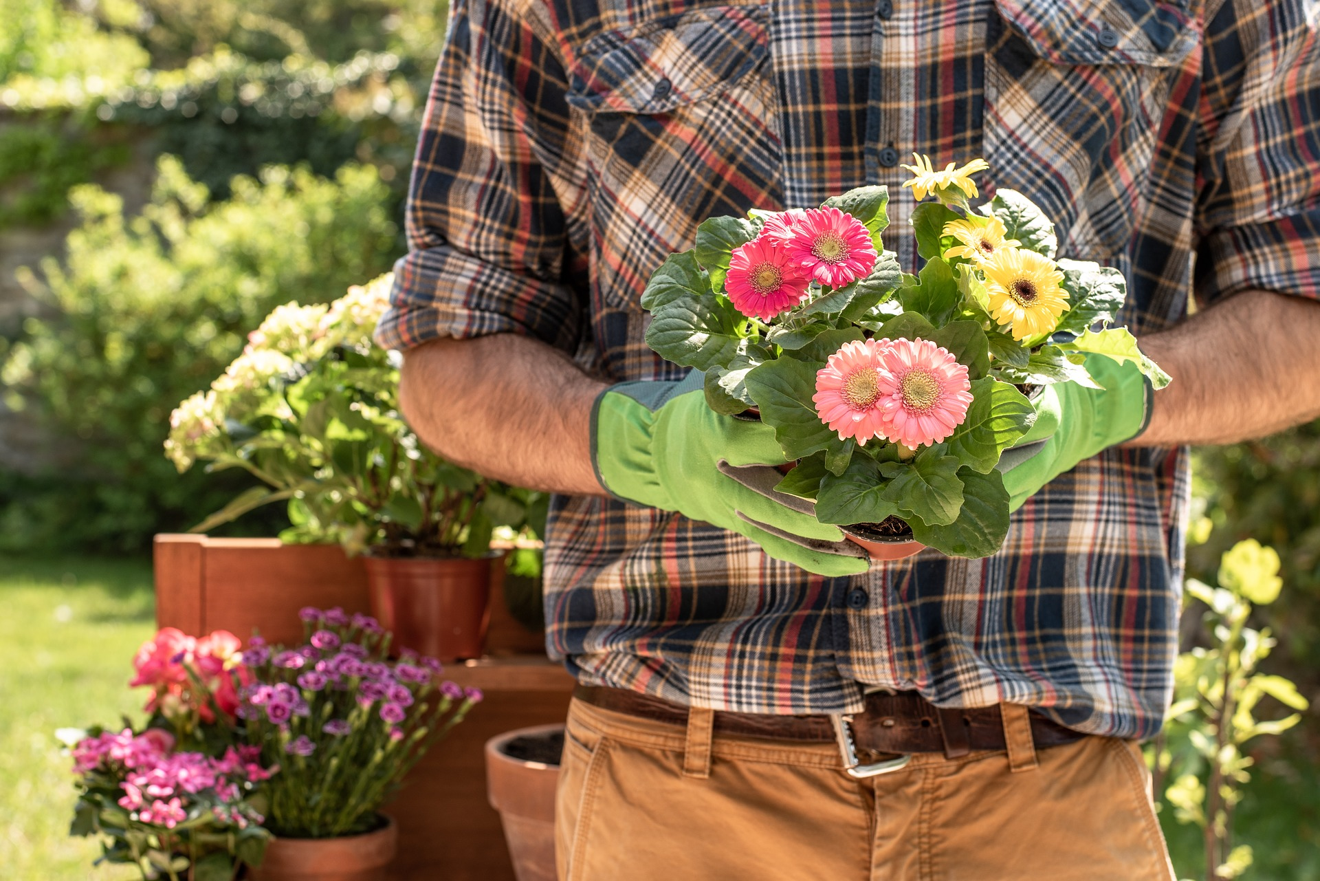 Summer Landscaping: Beautify Your Yard